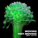 movingnotmoving2 (1)